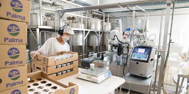 Conheça os processos que o leite passa antes de chegar aos mercados