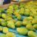 GLOBALG.A.P. atualiza normas e exige mais segurança alimentar dos exportadores de frutas