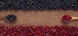 Rastreabilidade: Programa vai garantir origem e verificar qualidade das sementes de feijão